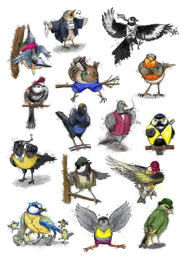 British garden birds collection