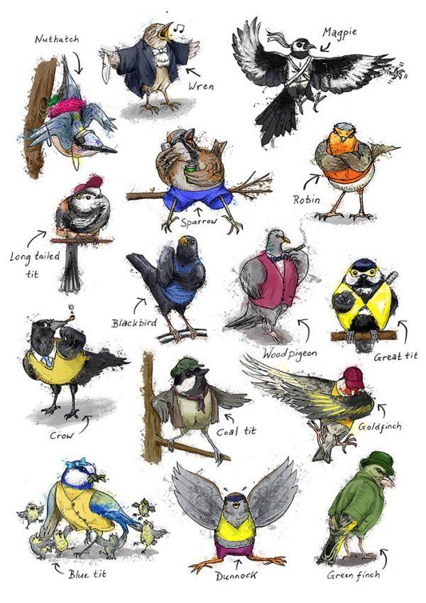 British garden birds illustration