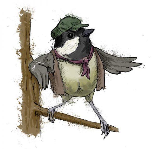 British birds - coal tit