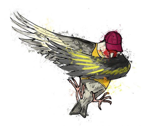 British birds - goldfinch