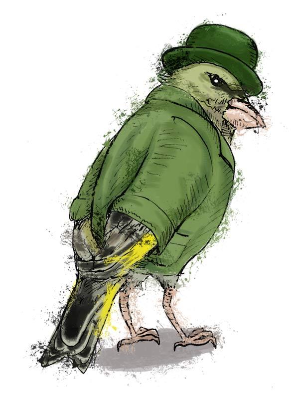 British birds - greenfinch