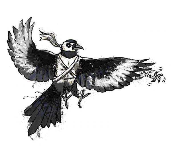 British birds - magpie
