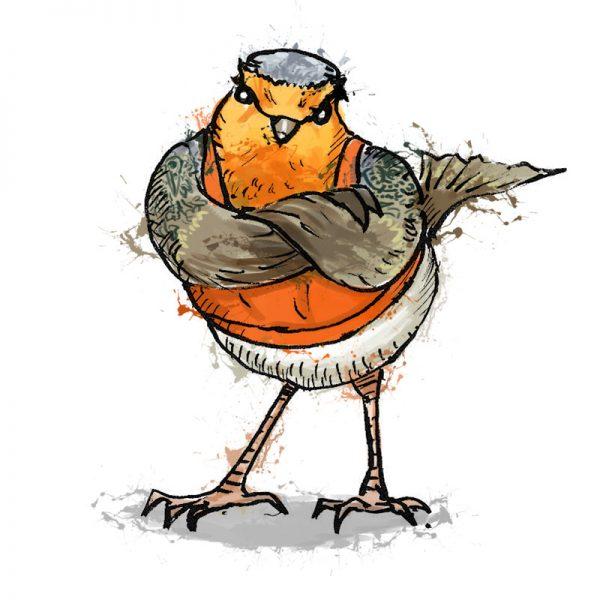 British birds - robin