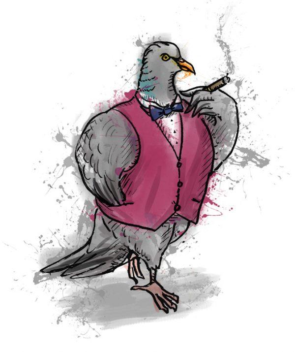 British birds - woodpigeon